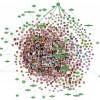 Aplikacja łącząca samorządy i obywateli na Facebooku