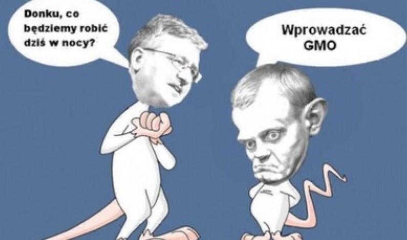 Co sieją w sieci przeciwnicy GMO?
