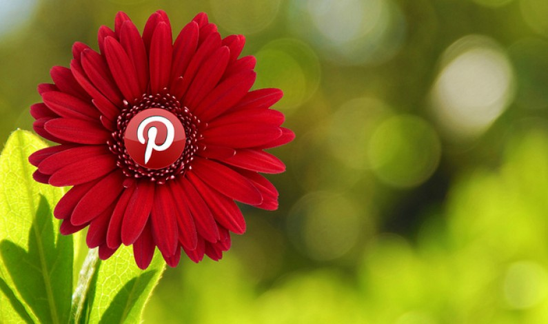 Pinterest nie zwalnia: 70 milionów użytkowników, co trzeci jest aktywny