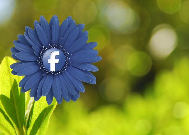 Nowości Facebooka: możliwość wstawiania postów na strony www i historyczny filtr w News Feedzie