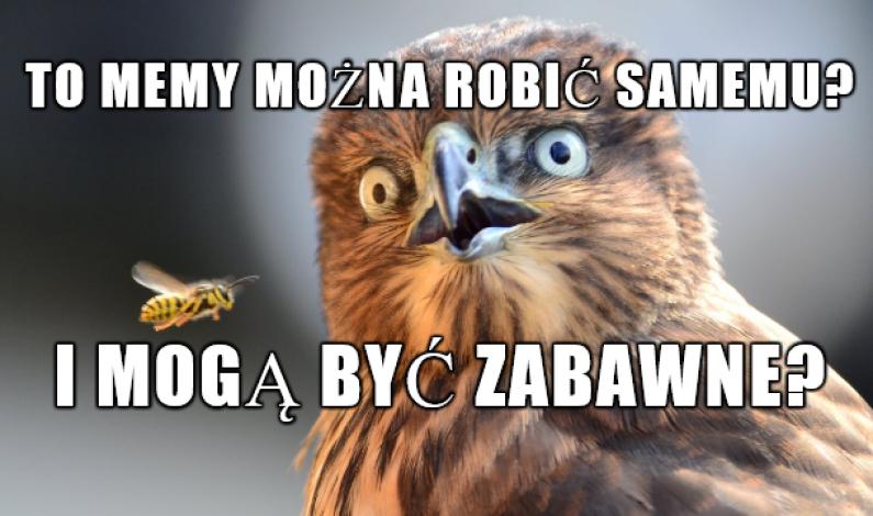 Powstał bank memów. Za jego pomocą można tworzyć też własne kreacje