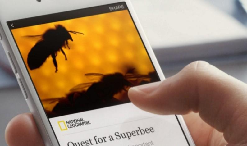 Wydawcy będą mogli publikować wideo – reklamy w Instant Articles