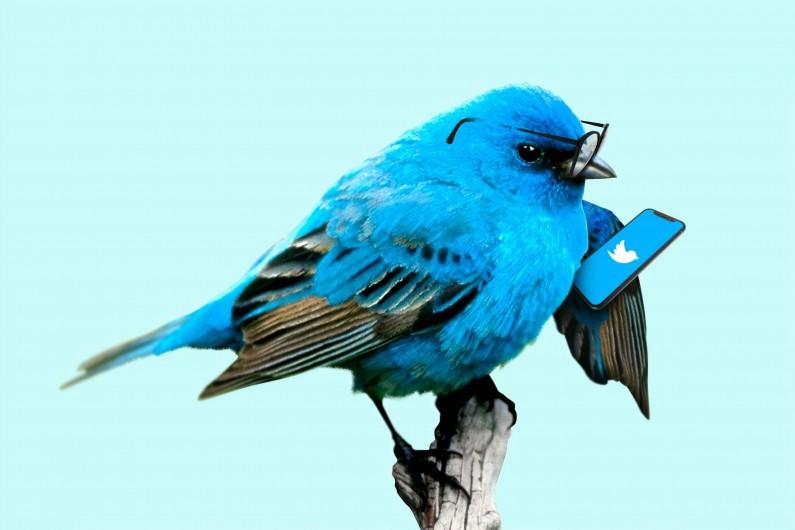 Nowe ikony aplikacji to kolejna zmiana na Twitterze