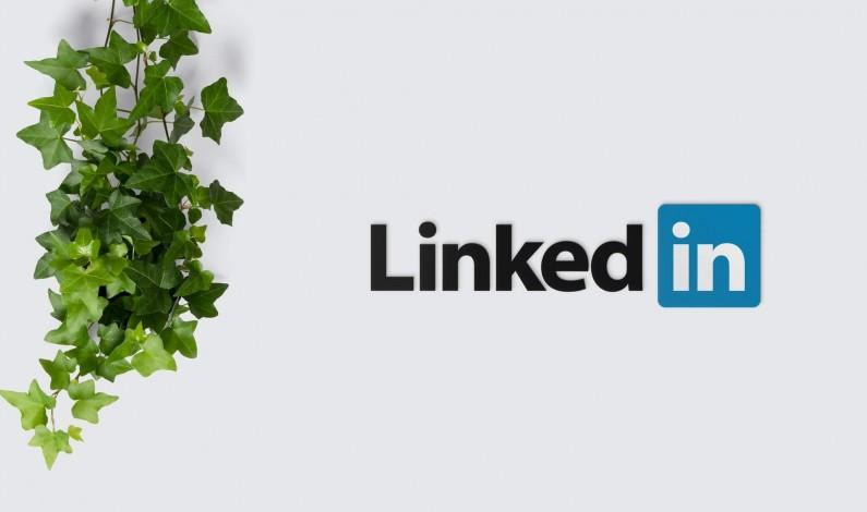LinkedIn pokazuje jak najlepiej wykorzystać narzędzia dostępne na platformie