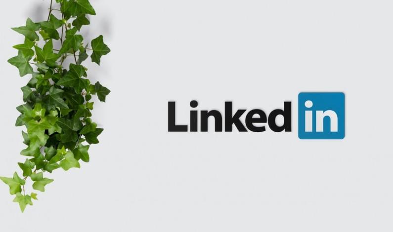 Social selling na LinkedIn. Po co handlowcom aktywność w social media?