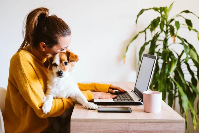 Pokolenie Z i Millenialsi odczuwają mniejszy stres podczas pracy w domu
