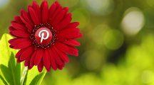 kwiatek pinterest logo