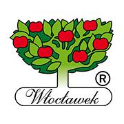 logo_włocławek