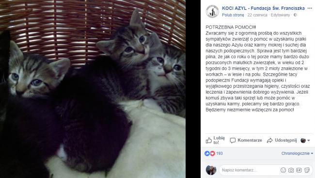 fot. facebook.com/fundacja.sw.franciszka