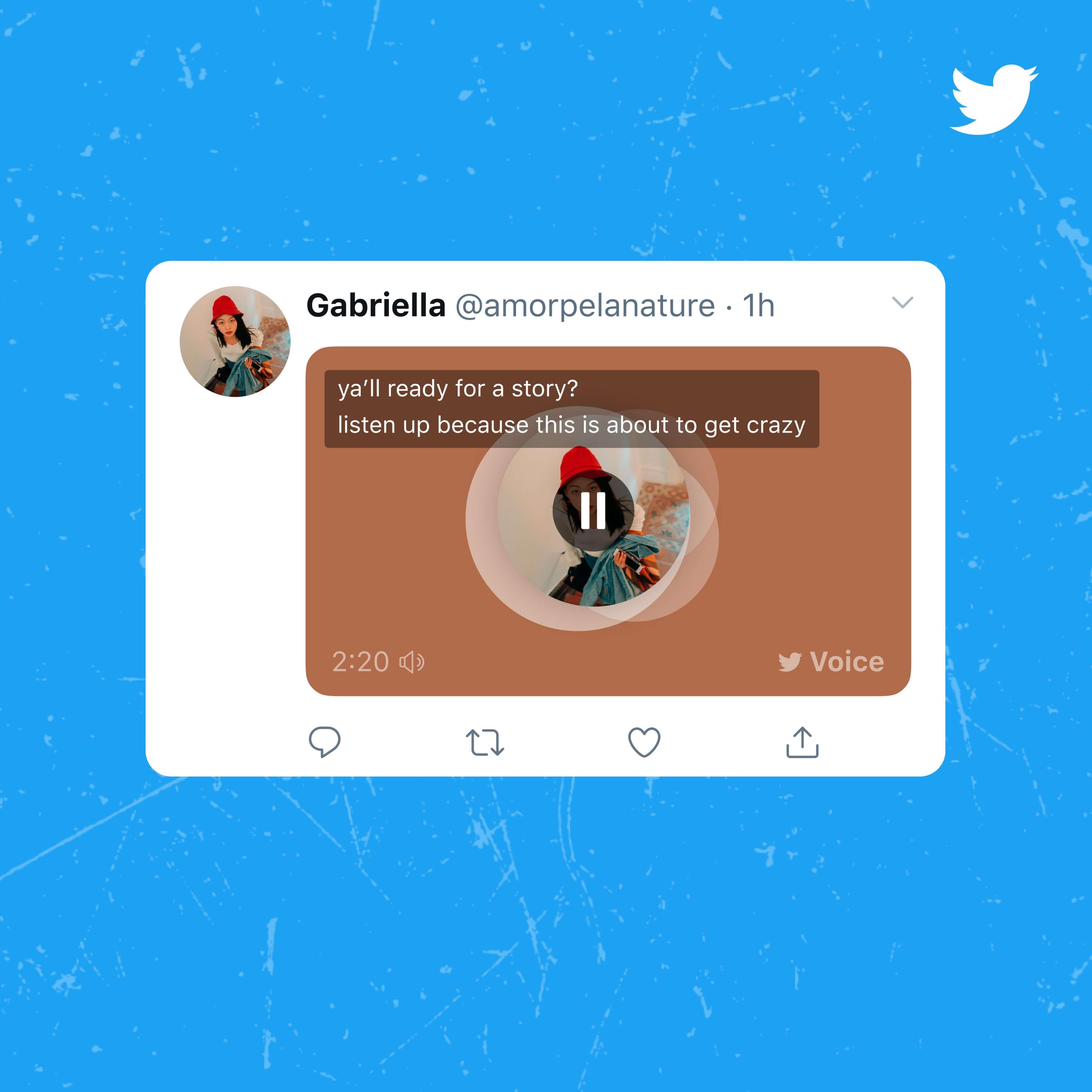 tweety głosowe